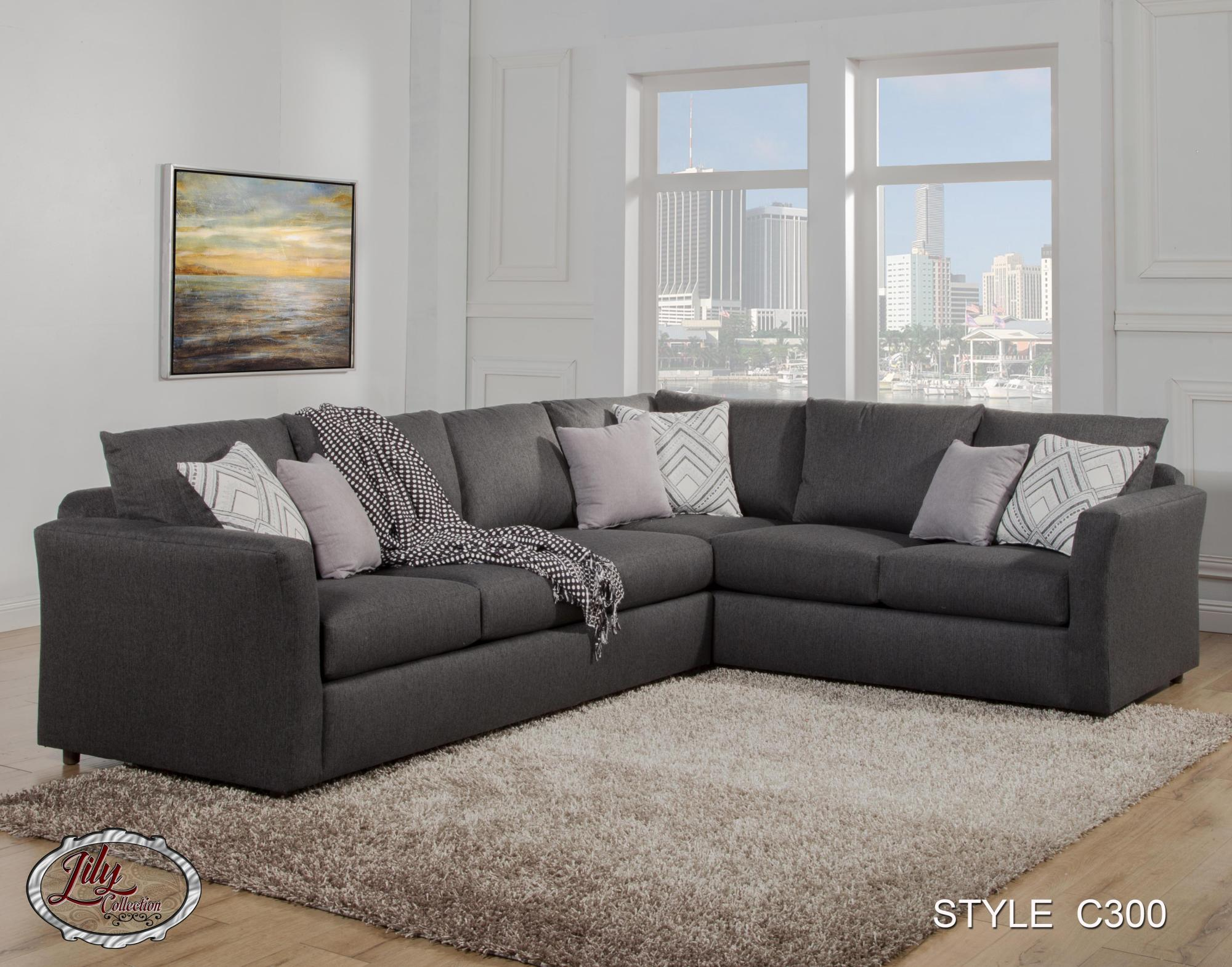 C300 sectional